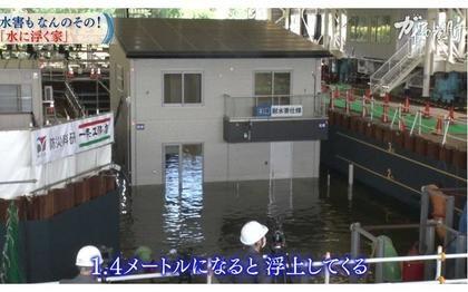 追加費用は約70万円...異常気象と共存する「水に浮く家」その驚きの性能:ガイアの夜明け