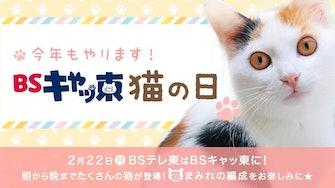 2月22日(月)BSテレ東はBSキャッ東に!