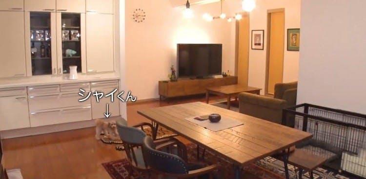 ariyoshi_20200208_11.jpg