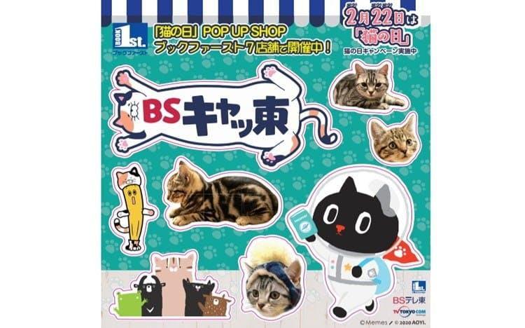 bs_kyatto_20200217_05.jpg