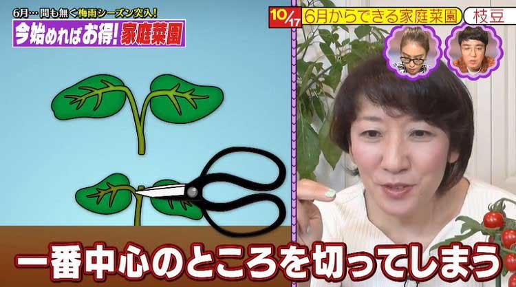takizawakaren_20200609_02.jpg