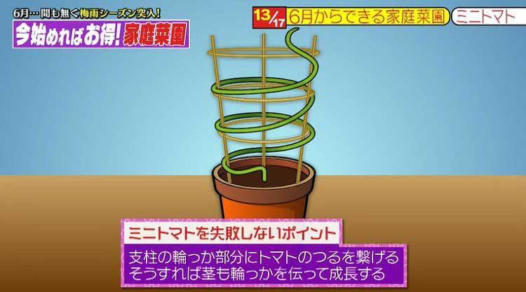 takizawakaren_20200609_05.jpg