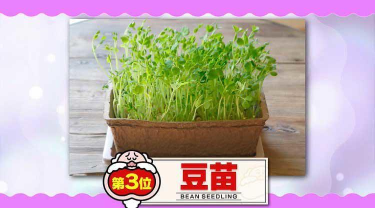 takizawakaren_20200609_06.jpg