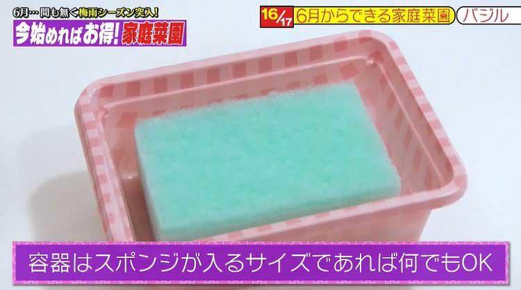 takizawakaren_20200609_09.jpg