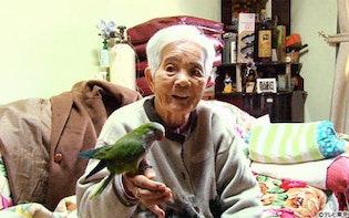 世界中に子孫81人! 南米秘境で暮らす89歳の日本人、破天荒すぎる人生とは:ナゼそこ