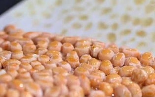 「納豆」の作り方、グルタミン酸が増す