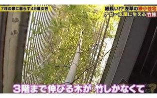 合言葉は「男つくらず家つくる」浅草の7坪狭小住宅に住む49歳女性:家、ついて行ってイイですか?(明け方)