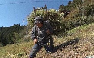 60年間...急斜面で畑作業! そば15キロ背負い坂下る78歳を発見:ナゼそこ?