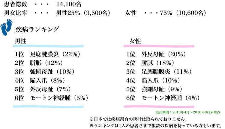 20180826_nanairo_torabul1.jpg
