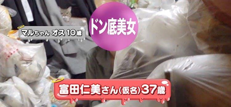 donzoko_20191212_01.jpg