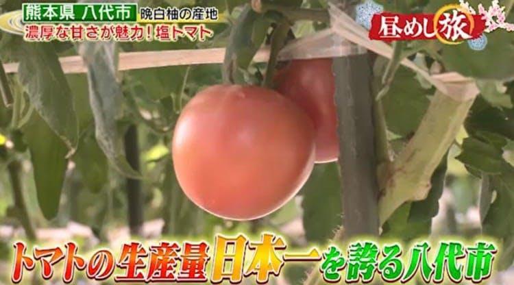 hirumeshi_20190104_14.jpg