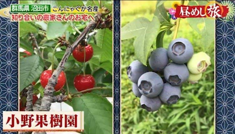 hirumeshi_20190818_13.jpg