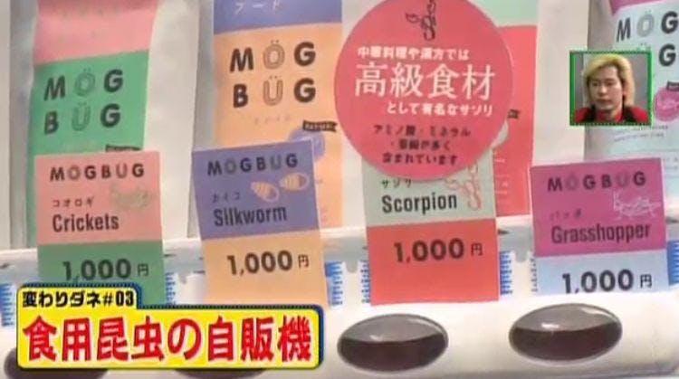mikata_20200605_06.jpg