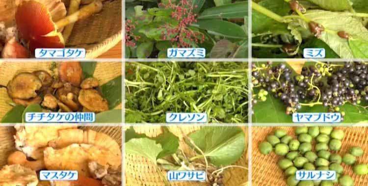 mikata_20201009_06.jpg