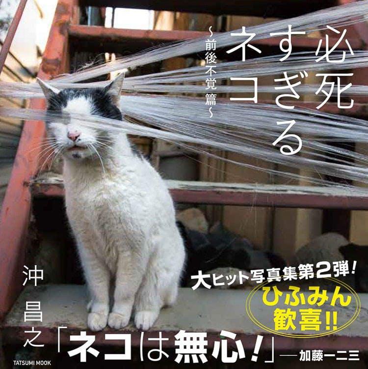 photo_20191103_11.jpg