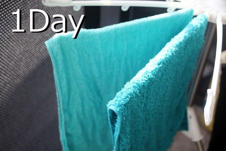 towel_20191106_04.jpg
