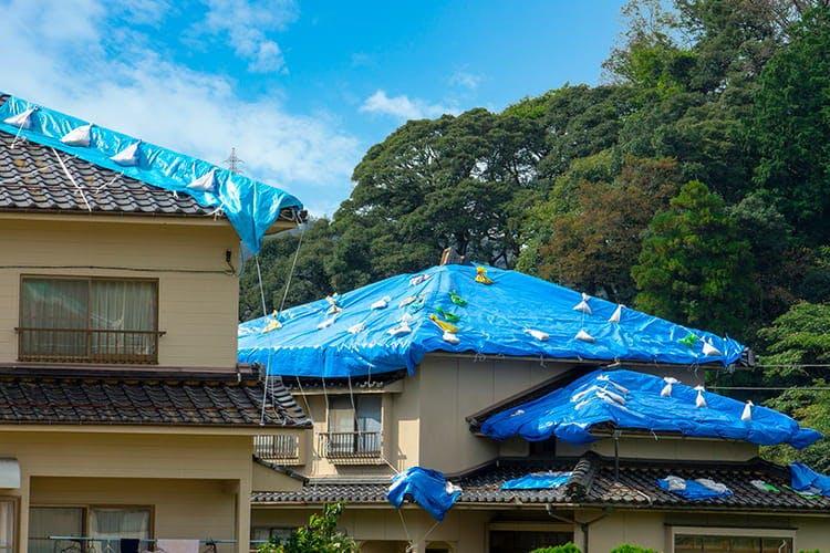 typhoon_20191222_04.jpg