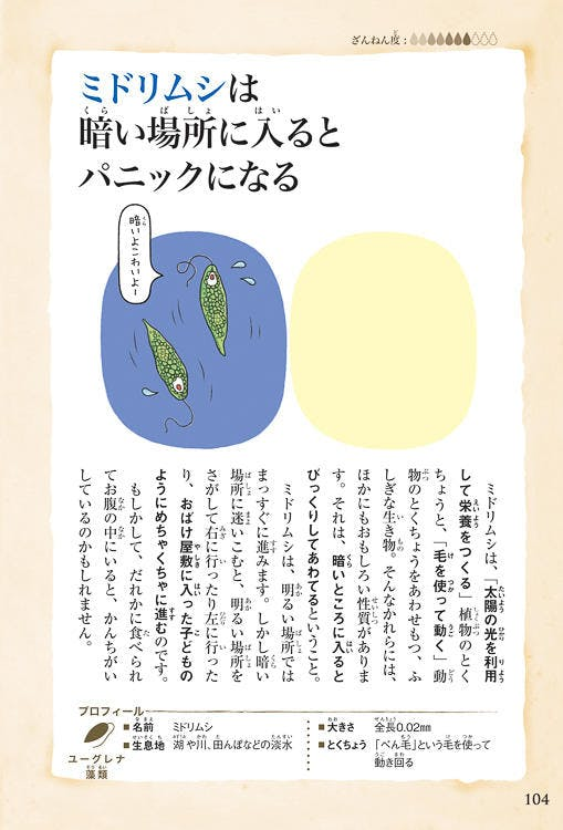 zannennaikimono_20190727_04.jpg