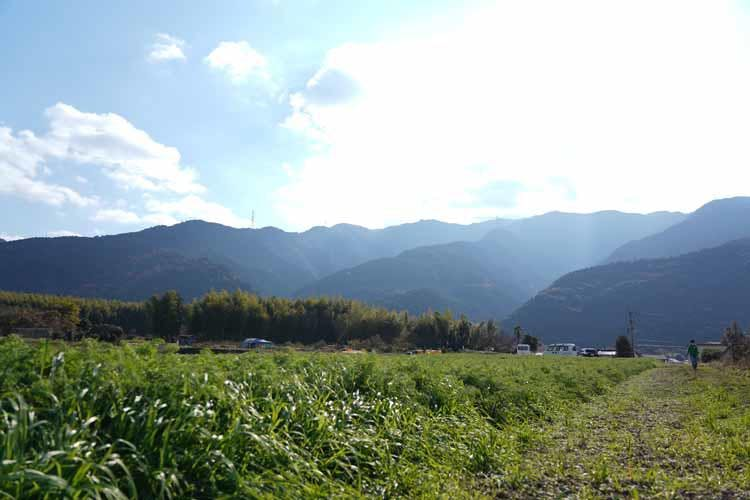 ehime_tokunaga_20210709_01.JPG