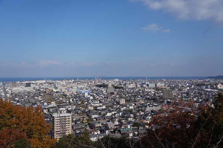 ehime_tokunaga_20210709_07.JPG