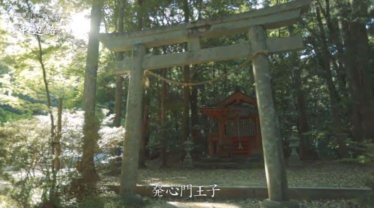wakayama_20190915_8.jpg