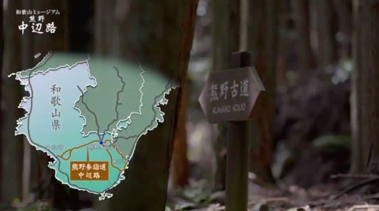 wakayama_20190817_ 2.jpg