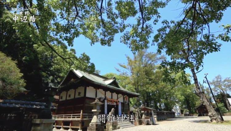 wakayama_20190817_ 3.jpg