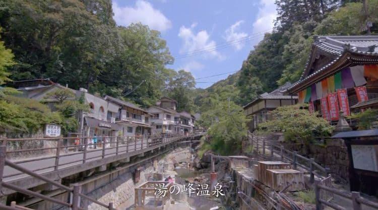 wakayama_20190817_ 6.jpg