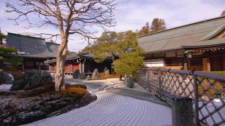 wakayama_museum_20190309_11.jpg